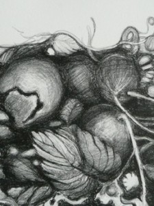 GROEISELS, 2010, LITHO, 21X30